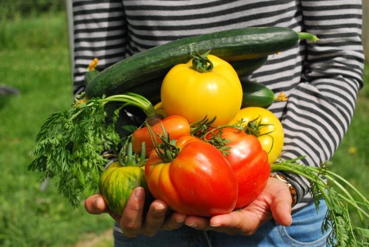 groente1