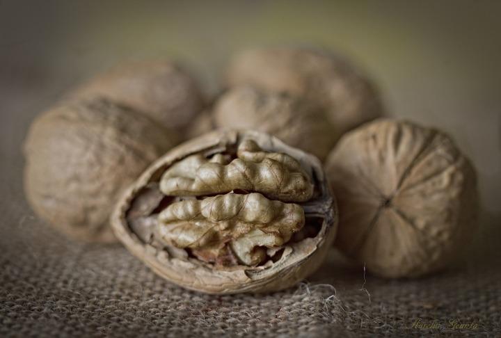 nuts-2135129_1280