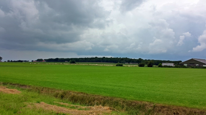 Wandelen in Marderhoek bij Oudemirdum aan de Friese Zuiderkust | Gaasterland