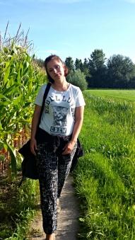 Een maisveld heeft iets. Vroeger als klein meisje een paar jaren bij een groot maisveld gewoond, aan de rand van het bos. Misschien heimwee.