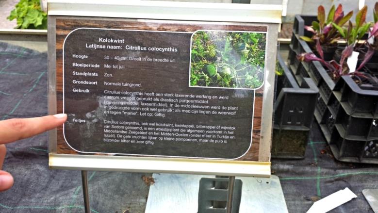 De Kruidhof Natuurmarkt 2017 Botanische tuin Fryslan