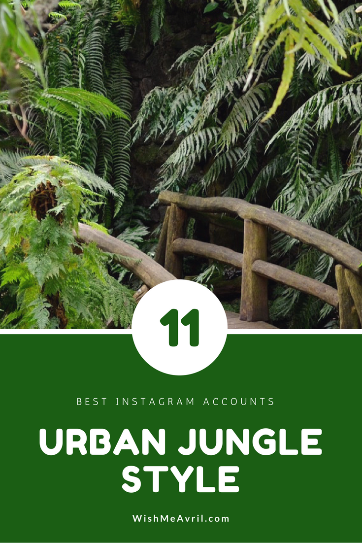 Urban Jungle Style 11 beste instagrammers